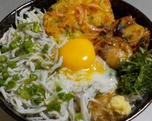トウキョウドウ しらす丼(全部のせ)_800円
