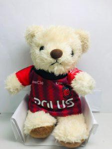 ☆ Build a Bear Rock ☆ Teddys