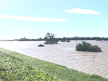 台風19号によるレッズランドの被害について